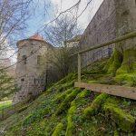 Moos & alte Mauern